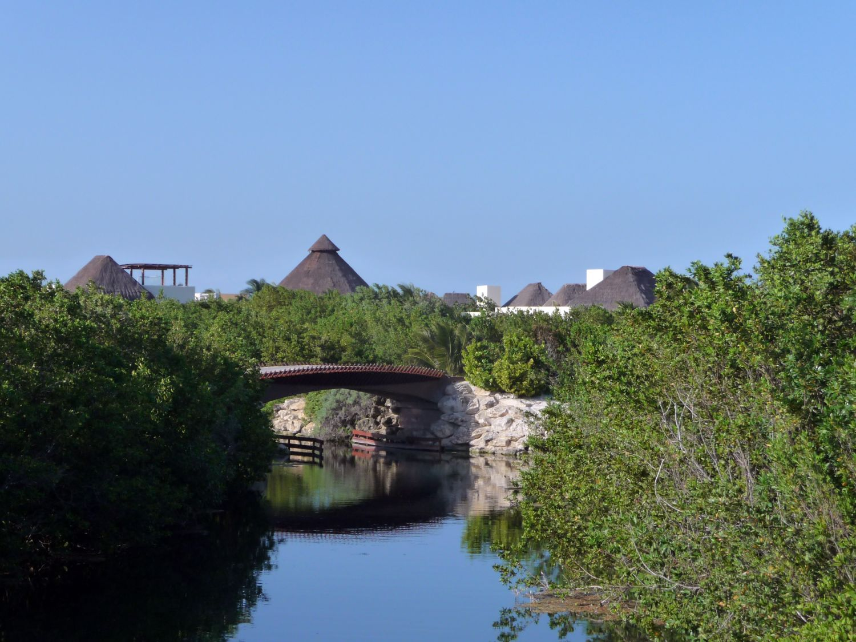 Mangrovenkanäle