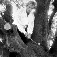 Famous Golf Shots – Bernhard Langer (1981, Benson & Hedges International)